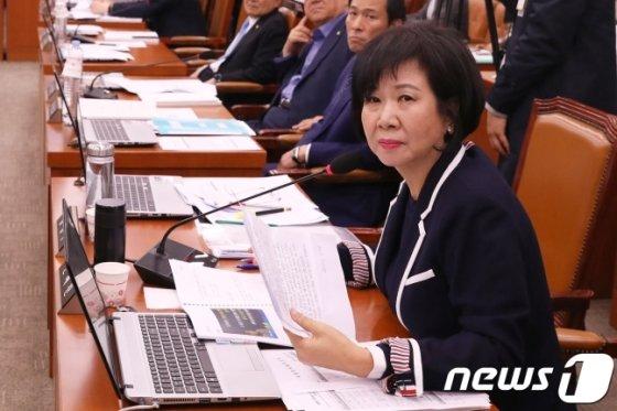 더불어민주당 손혜원 의원. /사진=뉴스1