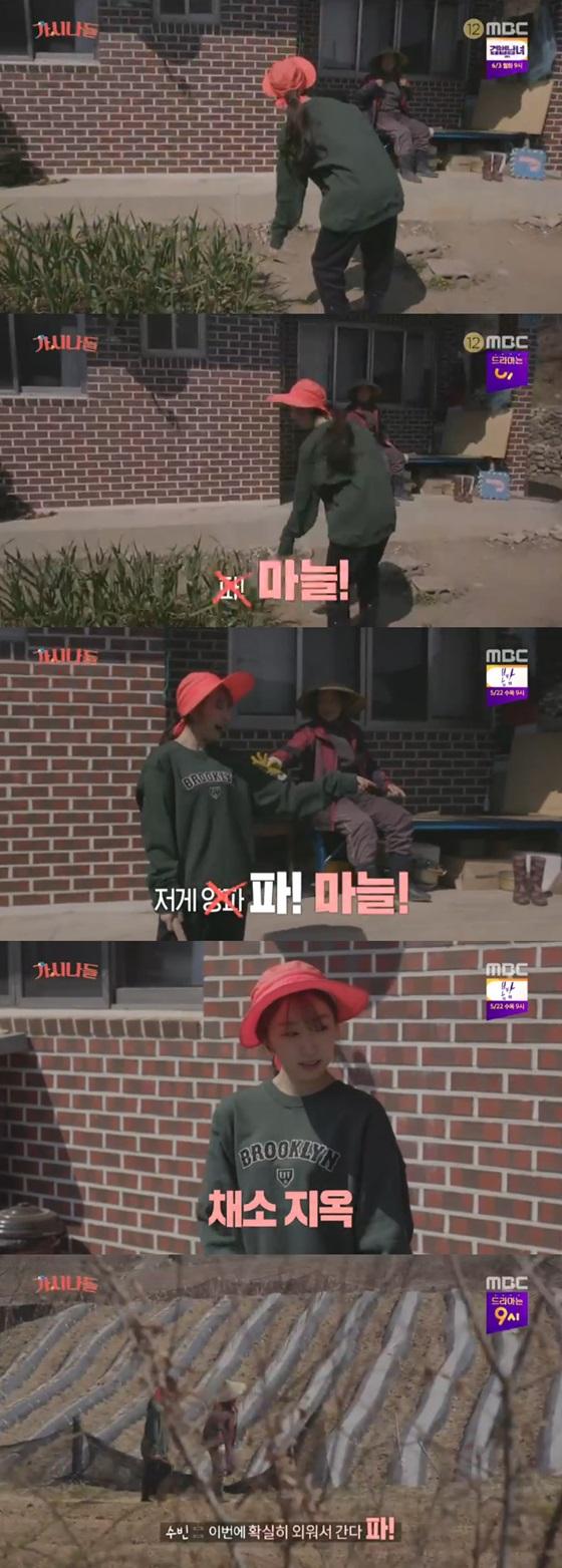 /사진=MBC '가시나들' 방송화면 캡처