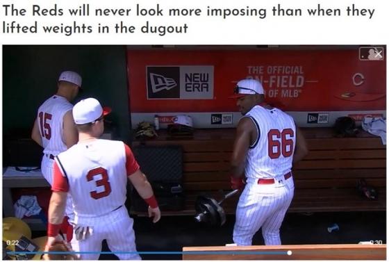 /사진=MLB.com CUT4 홈페이지