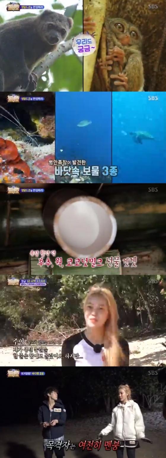 /사진=SBS 예능 프로그램 '정글의 법칙' 방송화면 캡처