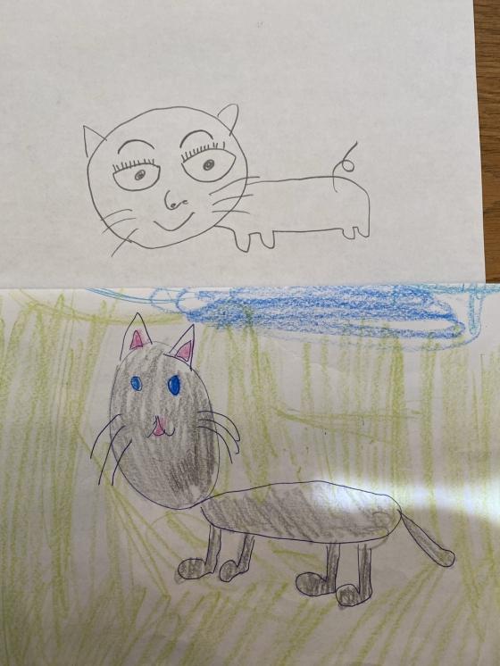 마에다 겐타가 25일 트위터에 공개한 고양이 그림. /사진=마에다 겐타 트위터