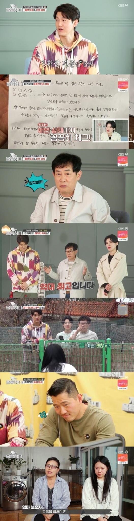 KBS 2TV '개는 훌륭하다'에 이기우가 견학생으로 출연했다./사진=KBS 2TV '개는 훌륭하다' 방송 화면 캡처
