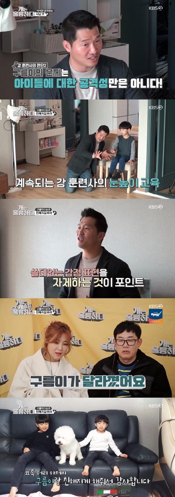 /사진제공=KBS 2TV '개는 훌륭하다'