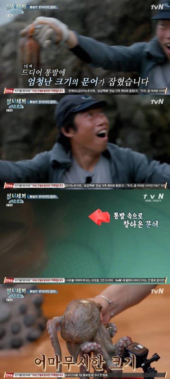 /사진=tvN \'삼시세끼\' 방송화면 캡처