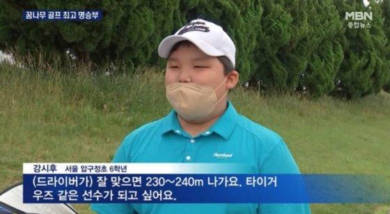 /사진=MBN 종합뉴스 방송화면